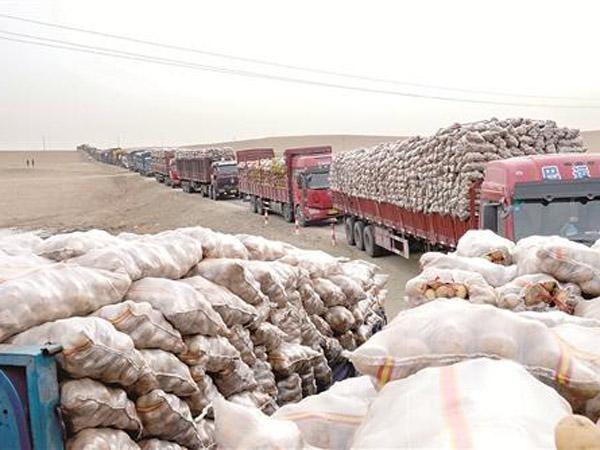 35TPH processing capacity potato starch processing plant